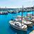 marina · filho · mallorca · porta · Espanha - foto stock © lunamarina