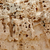 plaży · kamień · tekstury · krajobraz · morza - zdjęcia stock © lunamarina