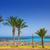 tenerife · İspanya · panoramik · görmek · plaj · dağ - stok fotoğraf © lunamarina