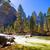yosemite national park merced river in california stock photo © lunamarina