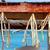hal · tengerpart · étel · természet · halászat · piac - stock fotó © lunamarina