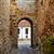 zamora door of dona urraca in spain stock photo © lunamarina