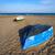 Valencia · LA · tengerpart · Spanyolország · pálmafák · víz - stock fotó © lunamarina