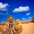 zandsteen · park · borneo · strand · natuur · zand - stockfoto © lunamarina