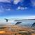 weer · luchthaven · witte · vliegtuig - stockfoto © lunamarina