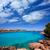 liman · görmek · dağ · ada · İspanya - stok fotoğraf © lunamarina