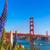 golden gate bridge san francisco purple flowers california stock photo © lunamarina