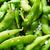 bonen · roestvrij · staal · geïsoleerd · witte · voedsel - stockfoto © lunamarina