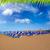 strand · tenerife · zuiden · kust · natuur - stockfoto © lunamarina