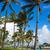Miami · tengerpart · óceán · art · deco · Florida · kerület - stock fotó © lunamarina