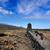 LA · vulkáni · láva · fekete · kövek · Kanári-szigetek - stock fotó © lunamarina
