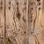 mediterráneo · pared · textura · árbol - foto stock © lunamarina