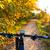 fiets · Valencia · park · zonsondergang · water · boom - stockfoto © lunamarina
