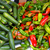 colorful green and red peppers and zucchini stock photo © lunamarina