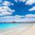 Nápoly · móló · tengerpart · Florida · USA · napos · idő - stock fotó © lunamarina