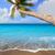 marrom · areia · da · praia · escrito · palavra · canárias · água - foto stock © lunamarina