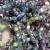 カラフル · ビーズ · 市場 · 宝石 · 美しい · 結晶 - ストックフォト © lunamarina