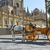 seville cathedral with horse carriage sevilla stock photo © lunamarina