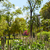 公園 · 庭園 · スペイン · アンダルシア · 市 · 自然 - ストックフォト © lunamarina