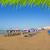 plaj · tenerife · güney · ağaç · doğa - stok fotoğraf © lunamarina