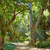 parque · jardins · Espanha · andaluzia · cidade · natureza - foto stock © lunamarina