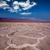 morte · solo · seca · muitos · mundo - foto stock © lunamarina