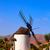 moinho · de · vento · canárias · Espanha · edifício · sol · paisagem - foto stock © lunamarina