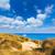 praia · mallorca · Espanha · natureza · paisagem - foto stock © lunamarina