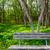 magányos · pad · park · tavasz · fa · nap - stock fotó © lunamarina
