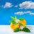 narancsfa · gyümölcs · virág · szelektív · fókusz · narancs · zöld - stock fotó © lunamarina