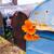 california poppy grunge mailboxes along pacific highway route 1 stock photo © lunamarina