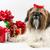 クリスマス · 白 · 黒 · 赤 · 弓 - ストックフォト © LynneAlbright