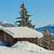 bois · village · Autriche · maison · mail · lettre - photo stock © macsim