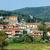 Toskana · manzara · yeşil · İtalya - stok fotoğraf © macsim