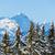 ピーク · パノラマ · 北 · サンファン · コロラド州 - ストックフォト © macsim