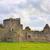 médiévale · Dublin · Irlande · mur · art · pierre - photo stock © mady70
