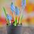 jardinagem · jacinto · flores · mesa · de · madeira · cópia · espaço · topo - foto stock © mady70