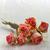 secar · rosa · rosas · velho · flor - foto stock © mady70