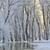 морозный · зима · деревья · Дунай · реке · воды - Сток-фото © mady70