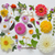 selection of various flowers isolated stock photo © mady70