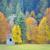 jesienią · brzozowy · lasu · piękna · drzewo · niebo - zdjęcia stock © mady70