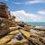 Australia · obraz · nice · krajobraz · wody · charakter - zdjęcia stock © magann