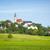 паломничество · Церкви · горизонтальный · изображение · трава · лес - Сток-фото © magann