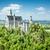 ノイシュヴァンシュタイン城 · アルプス山脈 · ドイツ · 自然 · 風景 · 山 - ストックフォト © magann