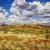 karijini australia stock photo © magann