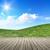 高い · 画像 · 新鮮な · 緑の草 · 青空 - ストックフォト © magann