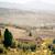 Pienza Landscape stock photo © magann