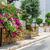 flor · calle · blanco · residencial · casas · casa - foto stock © mahout