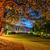 crepúsculo · paisagem · céu · árvore · jardim - foto stock © mahout