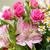 букет · роз · белый · весны · свадьба - Сток-фото © mahout